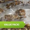 Magic Truffles Value pack
