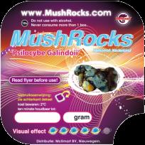 Magic Truffles Galindoi Mushrocks